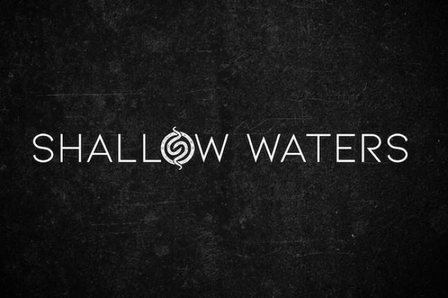 ShallowWaters_grafikoa.jpg