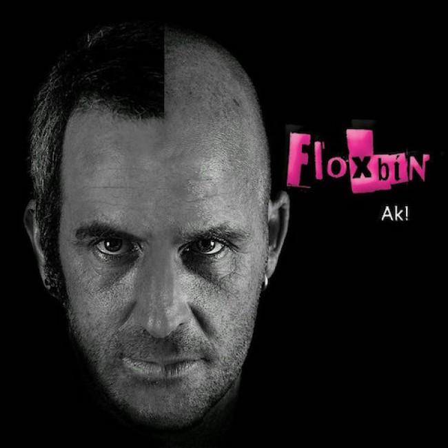 floxbin-cd1.jpg